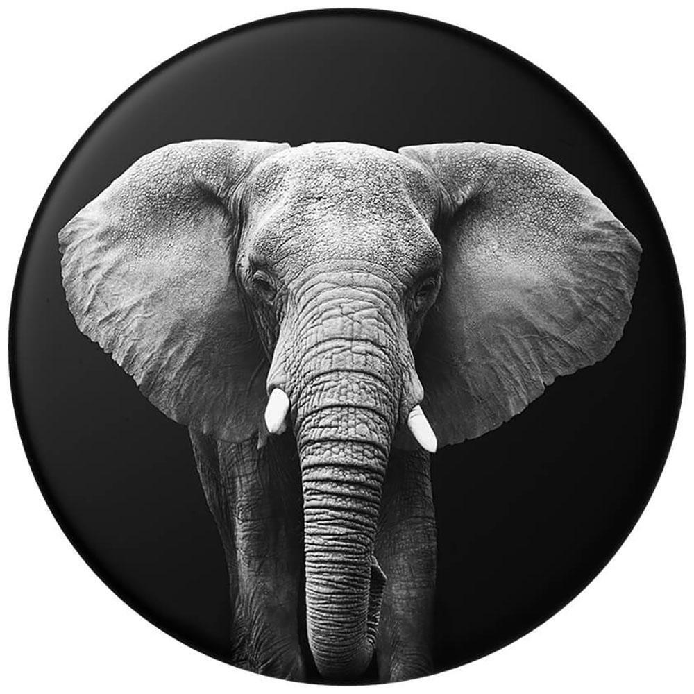 Image of   POPSOCKETS Loxodonta Africana POPTOP (Kun Løs Top)